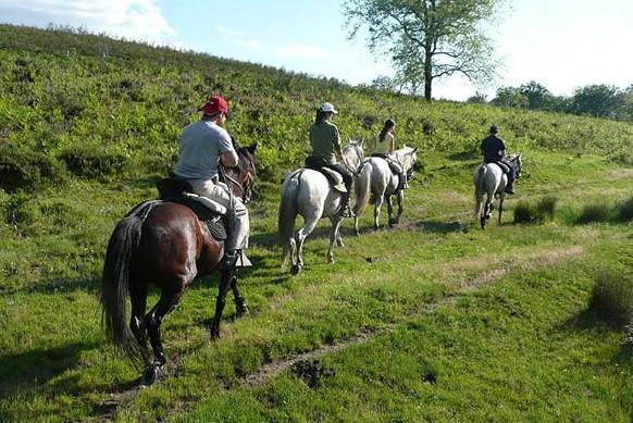Ruta a caballo por las marismas de Barbate