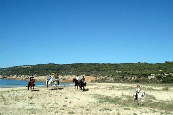 Ruta a caballo por las playas de invierno