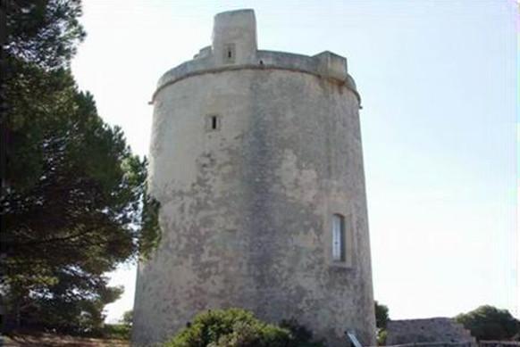 Ruta guiada a la Torre del Tajo